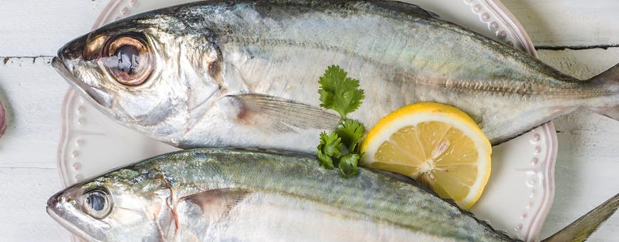 Os 5 principais benefícios de comer peixe
